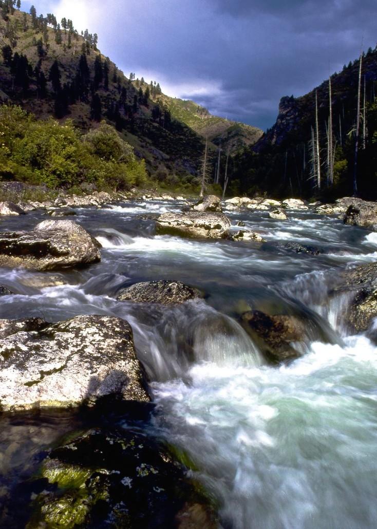Selway River - Tim Palmer